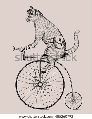 steam punk cat on retro bicycle