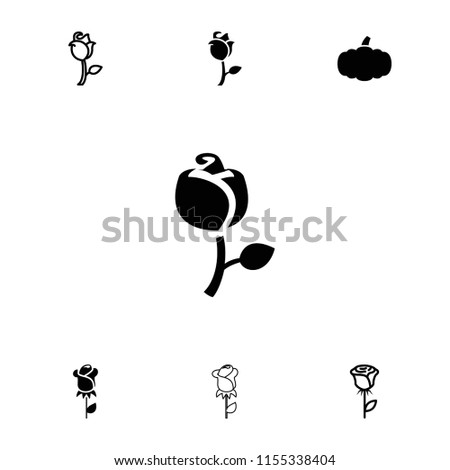Stem icon. collection of 7 stem filled and outline icons such as rose. editable stem icons for web and mobile.
