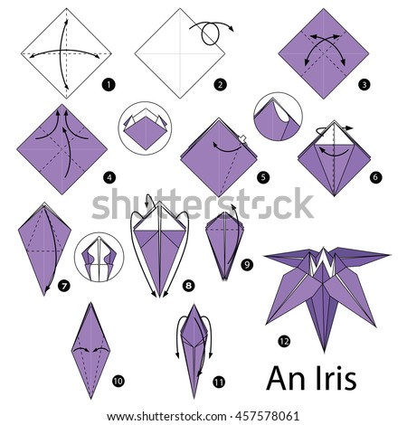 Step by step instructions how to make origami An Iris (flower).