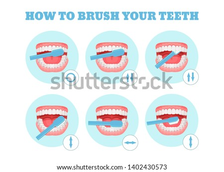 Step-by-step scheme, instructions on how to brush your teeth properly. Infographics toothbrush, toothpaste for oral hygiene. Clean healthy, white teeth, healthy lifestyle. Vector flat illustration. #1402430573