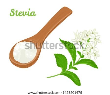 Verde fresco Stevia etiqueta de vector - Descargue Gráficos