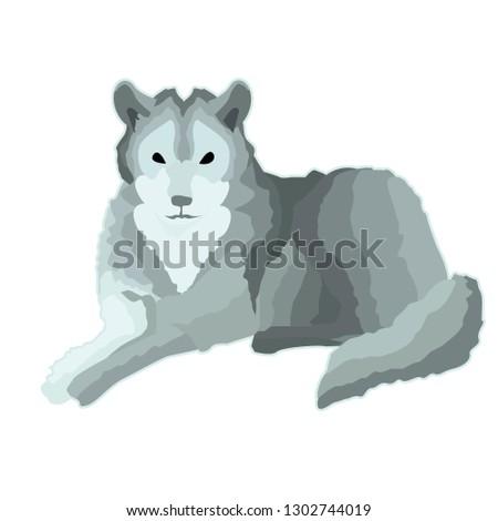sticker gray calm wolf who lies