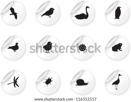 Stickers with birds and insects