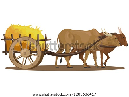 stock vector a cattle pull full of hay in the wooden cart graphic object illustration