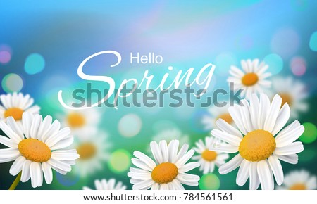 Stock vector illustration Hello, Hi Spring. Realistic chamomiles, blurred defocused background. Macro flowers. Green bokeh. Templates for placards, banners, flyers, presentations, reports. EPS10