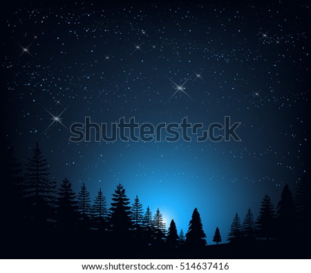 Stock vector illustration of night landscape with starry sky on a background of silhouettes of trees