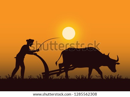 stock vector silhouette farmer plowing cow in the field graphic illustration