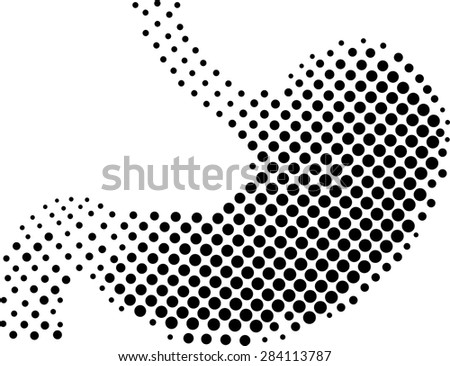 stomach white background vector