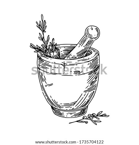 stone mortar with herbs. Sketch. Engraving style. Vector illustration. Foto d'archivio ©