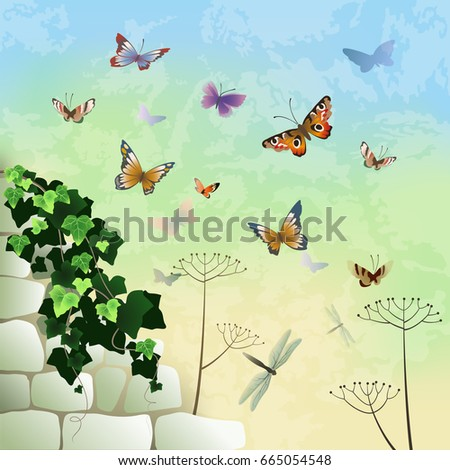 stone wall with ivy and