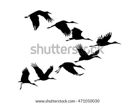 stork vector download free vector art stock graphics images rh vecteezy com stork vector image stork vector image