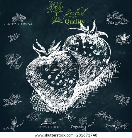 Strawberry. Hand-drawing,  illustration for printing, banner, website