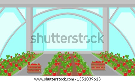 Strawberry Plantation in Greenhouse Illustration. Hothouse Vector Drawing. Plants in Garden Beds. Farming, Horticulture Cultivation Technology. Berries Growing in Glasshouse. Ripe Crop, Harvest