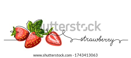 strawberry vector color