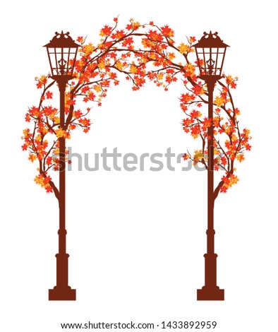 streetlights among autumn maple