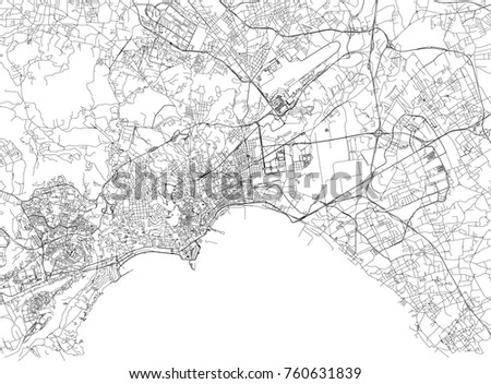 streets of naples  city map