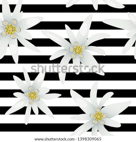 Striped seamless pattern with edelweiss flowers. Snow beauty. Vector illustration. Alpine star. swiss symbol. For decoration, prints, advertising, logo, posters invitation