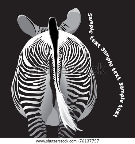 striped zebra (rear view animal)