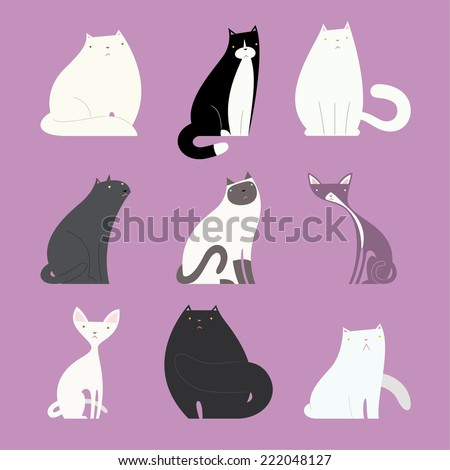 stylish cat set  with different