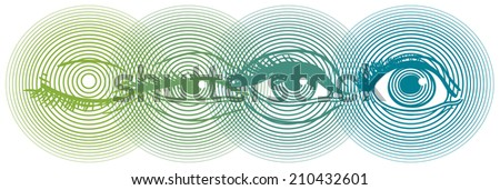 Stylish design with four images of human eye
