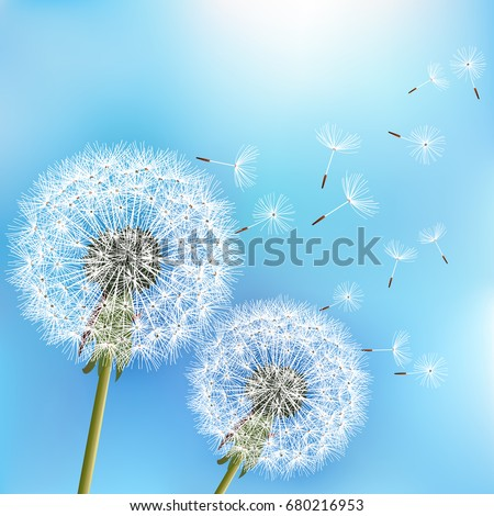 stylish nature blue background