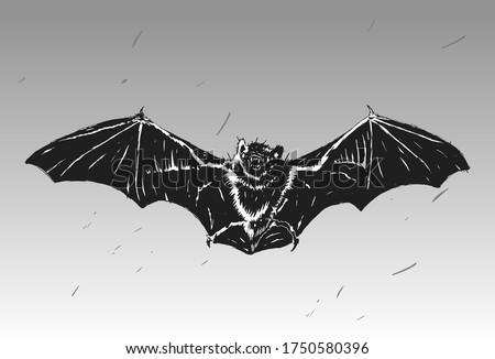 stylish stencil bat for poster