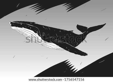 stylish stencil whale for