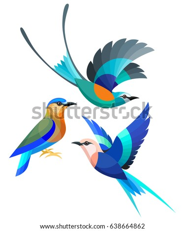 Stylized Birds - Abyssinian, Indian and Blue-bellied Roller