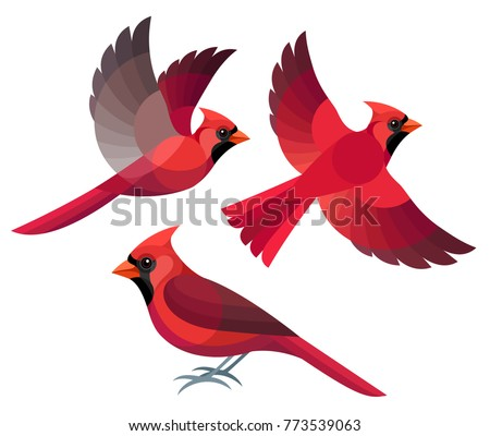 stylized birds   northern