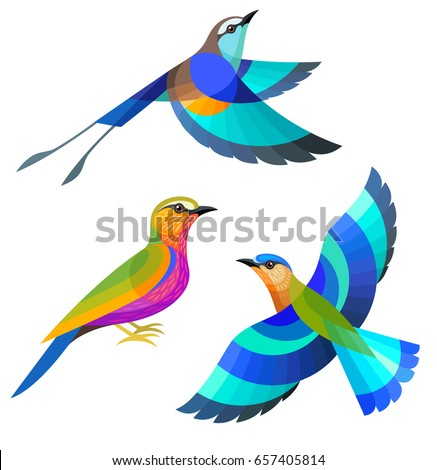Stylized Birds - Racquet-tailed, Purple and Indian Roller