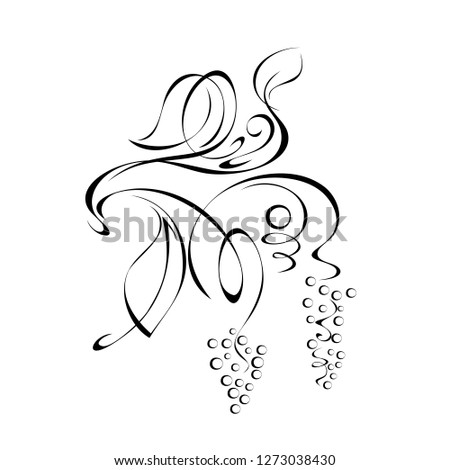 stylized branch of grapes with leaves and swirls of black lines on a white background
