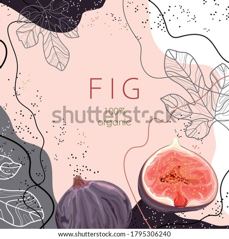 Stylized figs with leaves on an abstract background. 100% organic