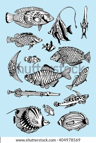 Stylized Fishes Aquarium Fish Ornamental Fish River Fish Sea
