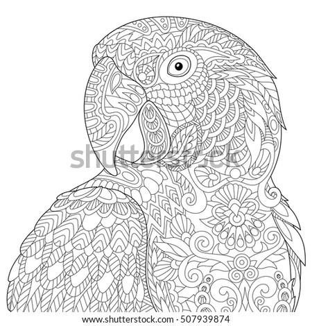 stylized macaw  ara  parrot