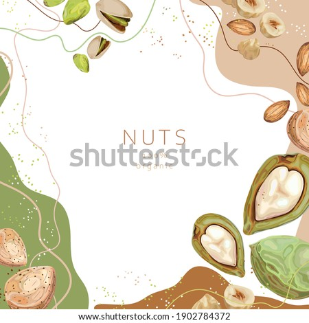 Stylized nuts on an abstract background. Pistachios, hazelnuts, almonds, nuts. Banner, poster, wrapping paper, sticker, print, paper, label. Vector illustration.