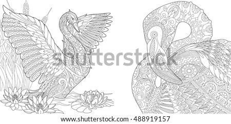 stylized two beautiful  birds