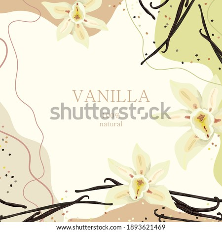 Stylized vanilla on an abstract background with text. Vanilla flowers. Banner, poster, wrapping paper, sticker, print, modern textile design. Vector illustration.  Foto d'archivio ©