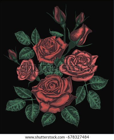 Stylized vector roses isolated on black - Red Roses