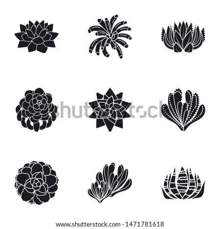 Succulent botany icon set. Simple set of 9 succulent botany vector icons for web design isolated on white background