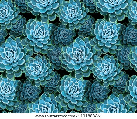 Succulents seamless pattern. Succulent vector background. Colored succulents and cactus floral print. Hand drawn art work.