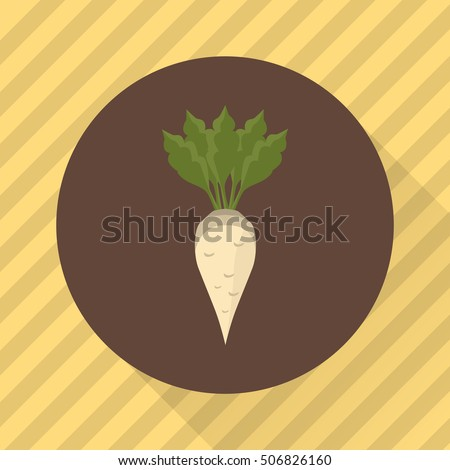 Sugar beet agriculture crop. Color flat icon