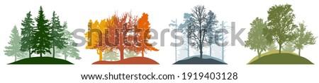 summer  autumn  winter and