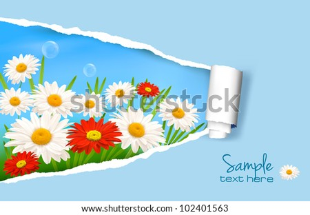 Summer background with flowers and ripped paper. Vector illustration.