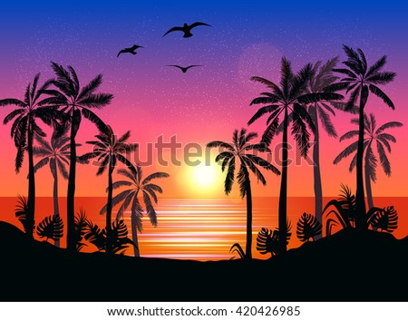 summer beach night palm
