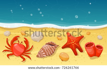 summer beach with sea shells