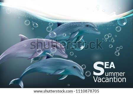 Summer card with dolphins Vector. Under water sea travel card vacation