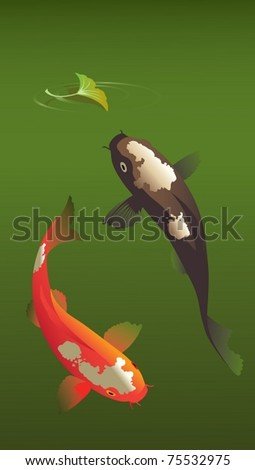 Summer carps.  The vector illustration of two sacred Japanese carps playing in summer pond.