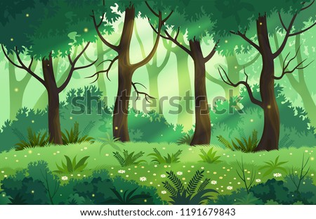 summer fantasy forest landscape