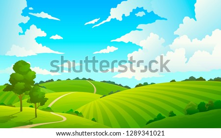 summer field landscape nature