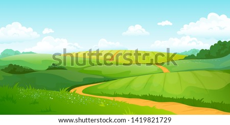 summer fields landscape